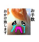 【実写】泣きのタマネギ(個別スタンプ:32)