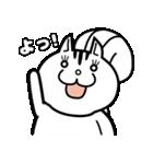 白リスの「しーりー」スタンプ(個別スタンプ:01)