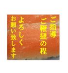 【実写】寿司☆押忍(個別スタンプ:36)