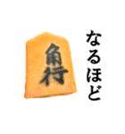【実写】将棋のコマ(個別スタンプ:08)