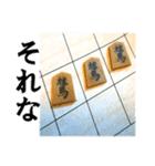 【実写】将棋のコマ(個別スタンプ:11)