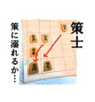 【実写】将棋のコマ(個別スタンプ:22)
