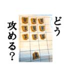 【実写】将棋のコマ(個別スタンプ:36)