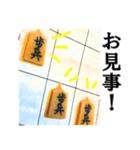 【実写】将棋のコマ(個別スタンプ:38)