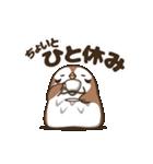 動く!のらスズメ(個別スタンプ:02)