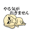 目ヂカラ☆わんこ3(個別スタンプ:29)