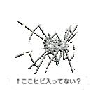 ドッキリスタンプ(個別スタンプ:2)