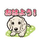 わんこ日和 ミニチュアダックスフンド仔犬(個別スタンプ:1)