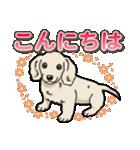 わんこ日和 ミニチュアダックスフンド仔犬(個別スタンプ:2)