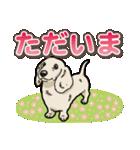 わんこ日和 ミニチュアダックスフンド仔犬(個別スタンプ:6)