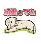 わんこ日和 ミニチュアダックスフンド仔犬(個別スタンプ:8)