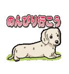 わんこ日和 ミニチュアダックスフンド仔犬(個別スタンプ:13)