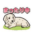 わんこ日和 ミニチュアダックスフンド仔犬(個別スタンプ:15)