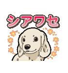 わんこ日和 ミニチュアダックスフンド仔犬(個別スタンプ:30)