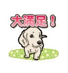 わんこ日和 ミニチュアダックスフンド仔犬(個別スタンプ:34)