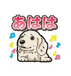 わんこ日和 ミニチュアダックスフンド仔犬(個別スタンプ:35)