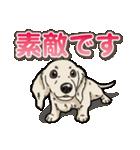 わんこ日和 ミニチュアダックスフンド仔犬(個別スタンプ:36)