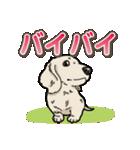 わんこ日和 ミニチュアダックスフンド仔犬(個別スタンプ:38)