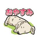 わんこ日和 ミニチュアダックスフンド仔犬(個別スタンプ:39)