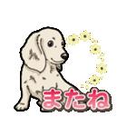 わんこ日和 ミニチュアダックスフンド仔犬(個別スタンプ:40)