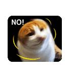 猫のうるちゃくん(個別スタンプ:04)