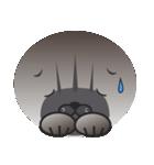顔だけ ちゃちゃ猫 日常会話編(個別スタンプ:08)
