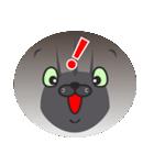 顔だけ ちゃちゃ猫 日常会話編(個別スタンプ:16)