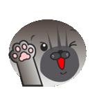 顔だけ ちゃちゃ猫 日常会話編(個別スタンプ:21)