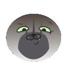 顔だけ ちゃちゃ猫 日常会話編(個別スタンプ:32)