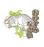 ねこねこ日和(個別スタンプ:40)