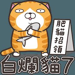 偉そうな猫が野次てる 7