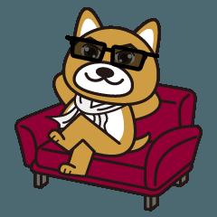 かっこいい イケメン犬