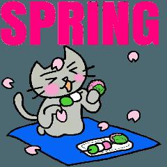 ねこくんの春