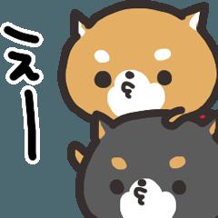 柴犬の和風すたんぷ 2