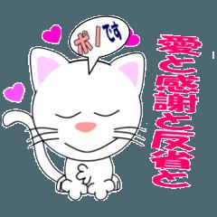 愛と感謝と反省の白ネコ「ポノ」