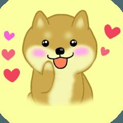 ♡ラブラブ 柴犬♡ (40個)