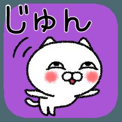 じゅんちゃんねこ