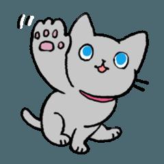 MIX猫 グレー【ねこのきもち】