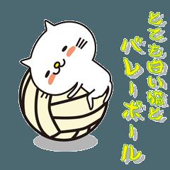 とても白い猫とバレーボール