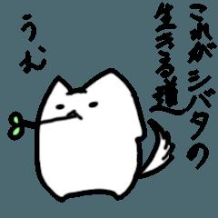 [LINEスタンプ] ぷにいぬ シバタさん (1)