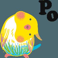 Po Po Po birds