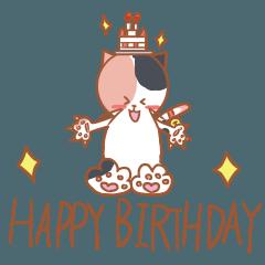 三毛猫の誕生日お祝い