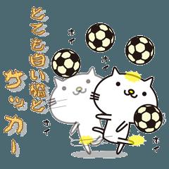 とても白い猫とサッカー