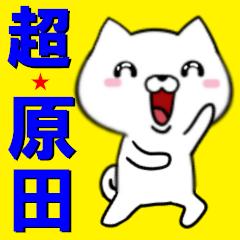 超★原田(はらだ・ハラダ)なイヌ
