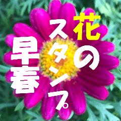 花のスタンプ2;早春
