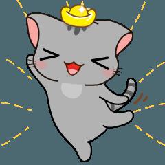 かわいい灰色の子猫-niki-2
