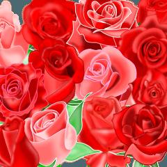 幸運のバラ