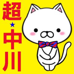 超★中川(なかがわ・ナカガワ)なネコ
