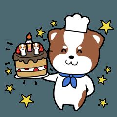 柴犬の誕生日お祝いスタンプ