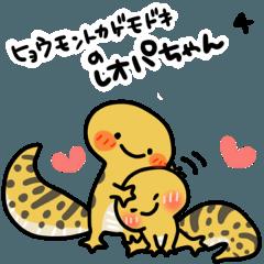 ヒョウモントカゲモドキのレオパちゃん4